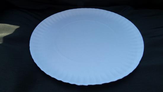 Talíř papírový hluboký r=28cm